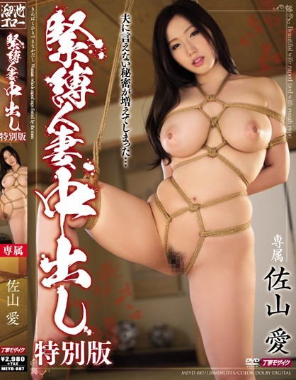 Ai Sayama - Bondage Pies Wife Love Special Edition
