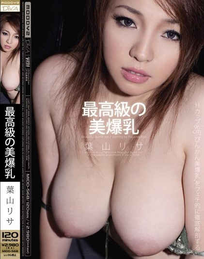Risa Hayama - High Class Beautiful Breasts